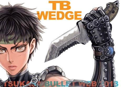 Tb_wedge_b03b